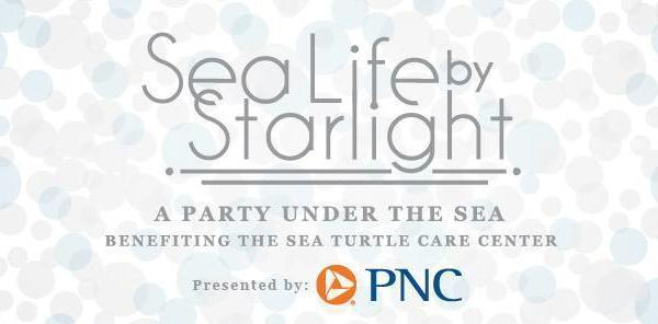 SC Aquarium's Sea Life by Starlight Party Returns in