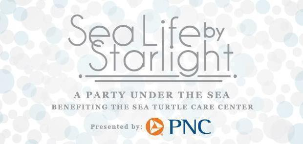 SC Aquarium's Sea Life by Starlight Party Returns in