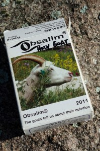 Obsalim cards - workshop and info at Holy Goat Farm Sutton Grange July 2016. An example for the holy goat herd ... how to learn the language