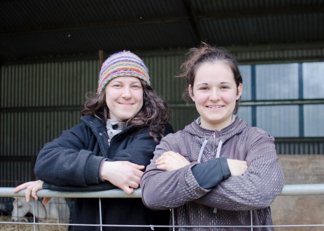 Interns Maider and Eva, from France and Italy, have provided important input to the farm, not just by their presence and work, but by taking on the Obsalim project over three months at Holy Goat. And there's the new dairy set-up; good for goats and humans alike.