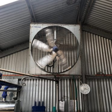 industrial fan in the dairy
