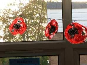 Calder Poppies (4)