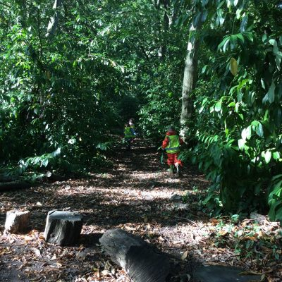 P-S Forest School (16)