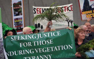 Campaign group Scothedge takes its fight against the problem of high hedge disputes to the Scottish Parliament. The organisation was lobbying MSPs to back a public consultation into the issue and to introduce new legislation to limit the size of nuisance hedges in Scotland.