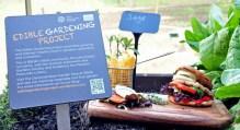 catering PR photography by Holyrood PR in Edinburgh, Scotland