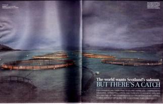 Herald Magazine Coverage