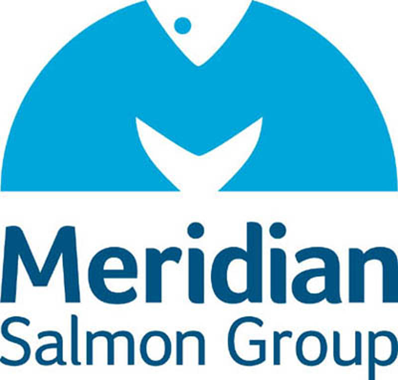 Meridian logo for web news