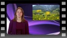 Weekly PR video presented by Edinburgh PR agency exec