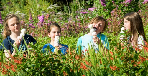 New floral flavours have been created especially for the Royal Botanic Garden Edinburgh. The Garden's exclusive catering partner, Sodexo Prestige has been working with experts at Scotland's best known ice cream lab to develop the new flavours. Now the delicate rose, jasmine and lavender ices, specially produced by Mackie's of Scotland, will be on sale exclusively to Garden visitors over the rest of the summer. First to test out the flavours were these excited schoolgirls, all from the Mackie family - sisters Adrienne and Krissie Mackie and their cousins Lucy and Katie McNutt