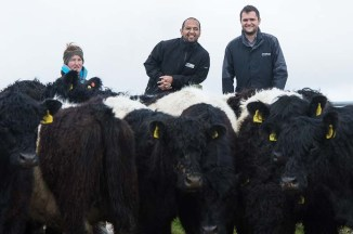 BANKS KNOCKENDURRiCK....... IN PIC........... Stuart Baungally, centre and Callum Whiteford, right with Kirsty Graham and some of her father's Belted Galloway cows. (c) WULLIE MARR/HPR