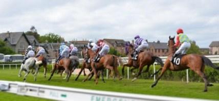 musselburgh racecourse