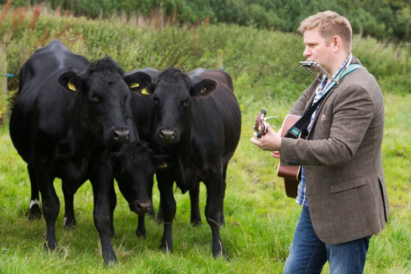 Mackie's of Scotland Country Music Cow Experiment PR in Scotland