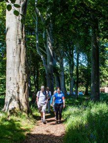 Scottish PR photograph for Dementia Friendly Health Walk launch