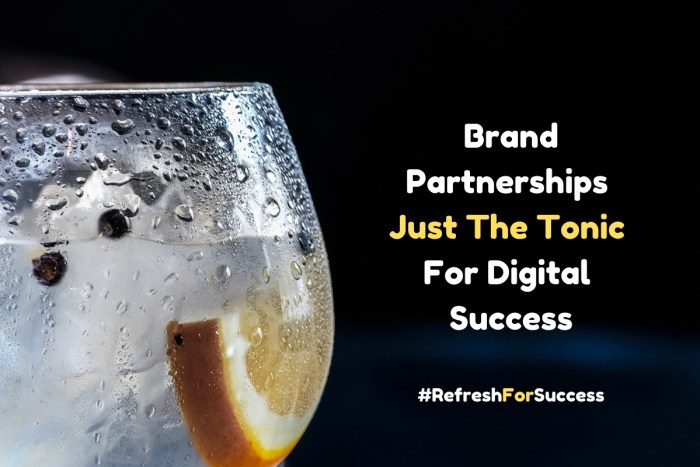 Digital PR blog post image of a cooled glass of gin and tonic for The Walled Gardens and Luvians competition