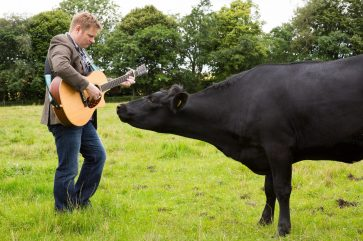Music festival organiser Colin Clyne serenaded the Mackie's of Scotland dairy herd - captured in PR photography