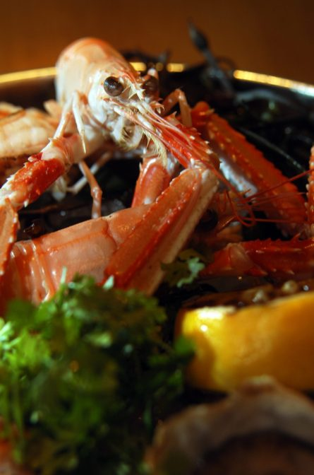 Food and drink PR photography for Tigerlily-seafood platter