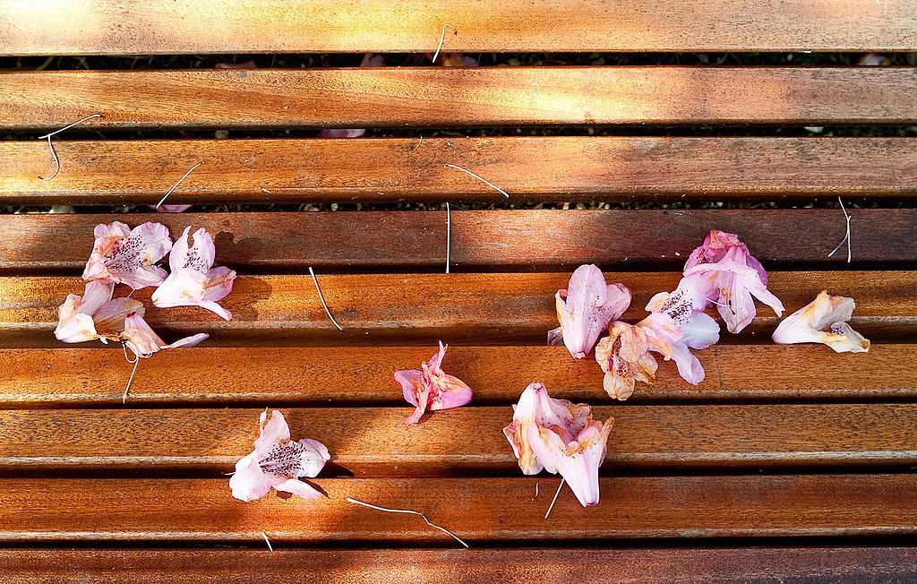 s terrassen sichtschutz kunststoff geflecht - terrasseenbois,