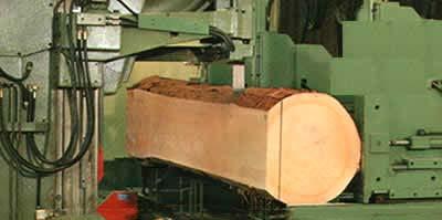 Segheria  Holz Pichler SpA  Nobilitiamo il legno  Alto