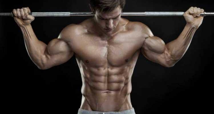 Volumen para tus músculos