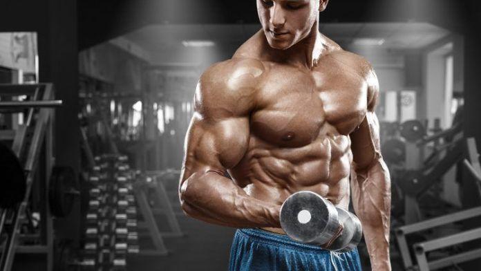 Puntos importantes en el entrenamiento para ganar Masa Muscular