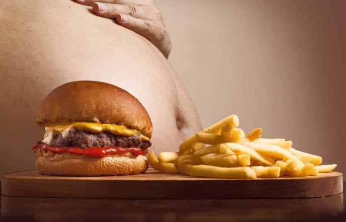 grasa localizada comida