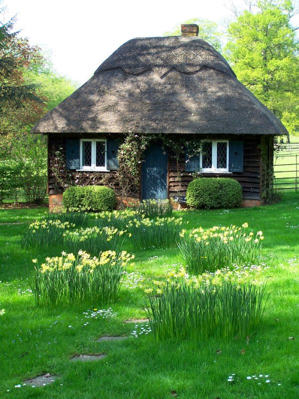 Small Cottage House