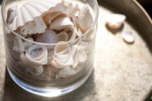 貝殻を瓶に入れる飾り方