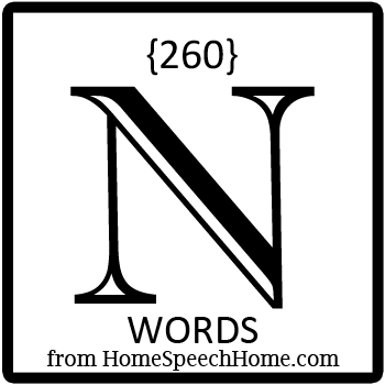 260+ N Words, Phrases, Sentences, & Paragraphs Grouped by