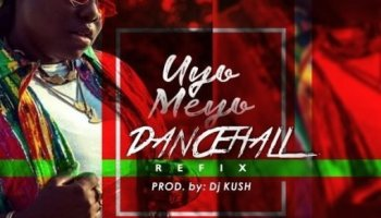 MP3: Teni – Uyo Meyo (EDM REFIX) Mp4 Download | Home4ent com