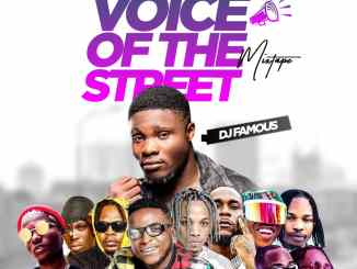DJ Famous – Voice Of The Street