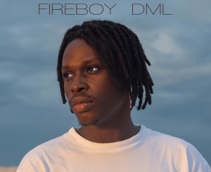 ALBUM: Fireboy DML – Laughter, Tears & Goosebumps (LTG)