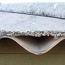 asbestos survey cost