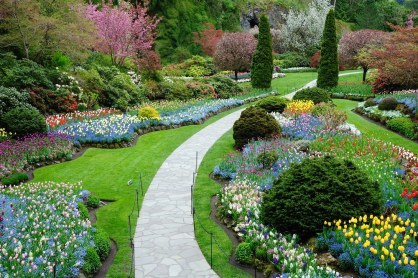 ideal gardering & landscaping gallery-2
