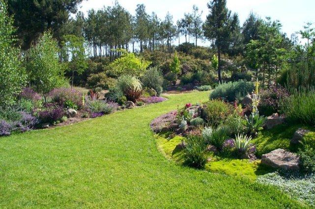 modern gerdering & landscaping ideas gallery-3