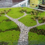 Green Roofs: Extensive, Semi-extensive, Intensive