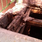 Dangers & Prevention of Dry Rot