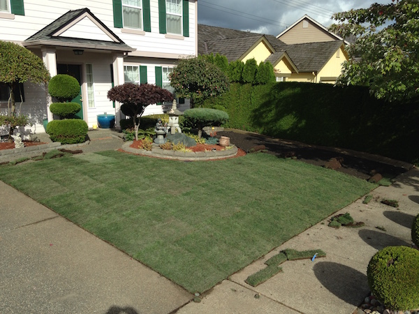 HomeAdvisors Guide to Laying Sod Properly