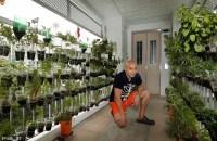 DIY herb garden in HDB corridor | Home & Decor Singapore