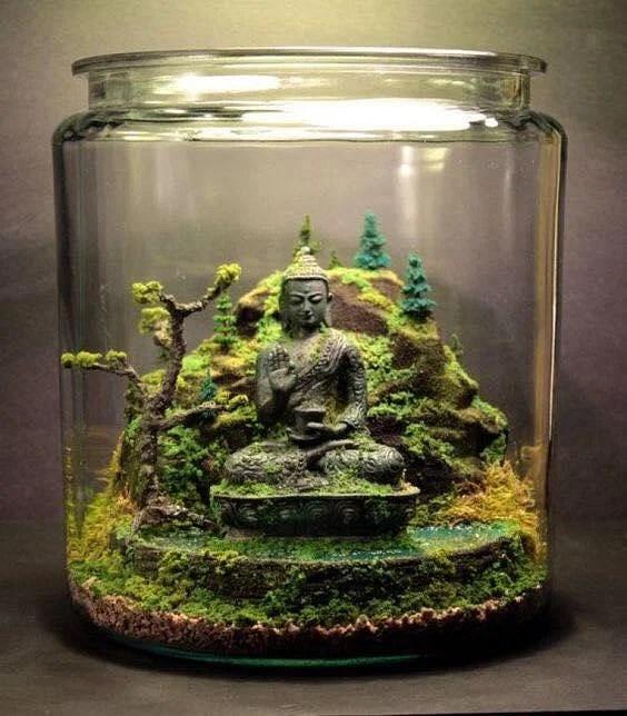 Succulent Plants Artificial