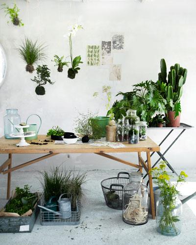 Zelf maken 5 nieuwe ideen voor groen in huis
