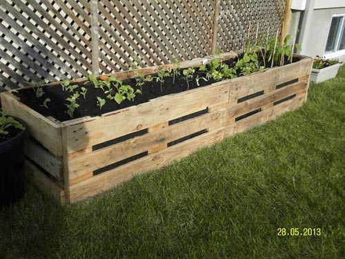 Vegetable Garden Planter Box