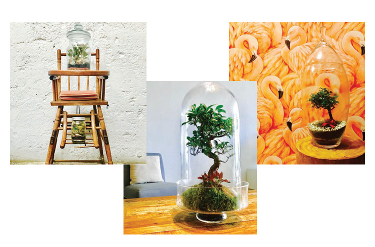 BREATHING CREATIONS FOR THE HOME Home & Lifestyle