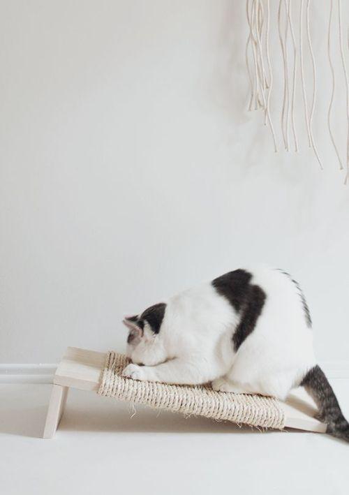 diy muebles para gatos