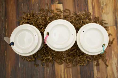 three diy coffee cups