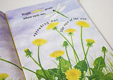 DANDELIONS: STARS IN THE GRASS SPRING BOOKS