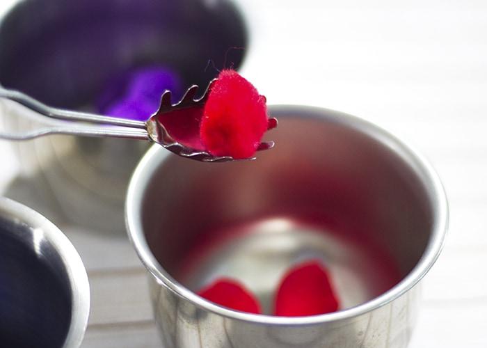 Berry Picking Story Time- Berry Pom Pom Color Sort