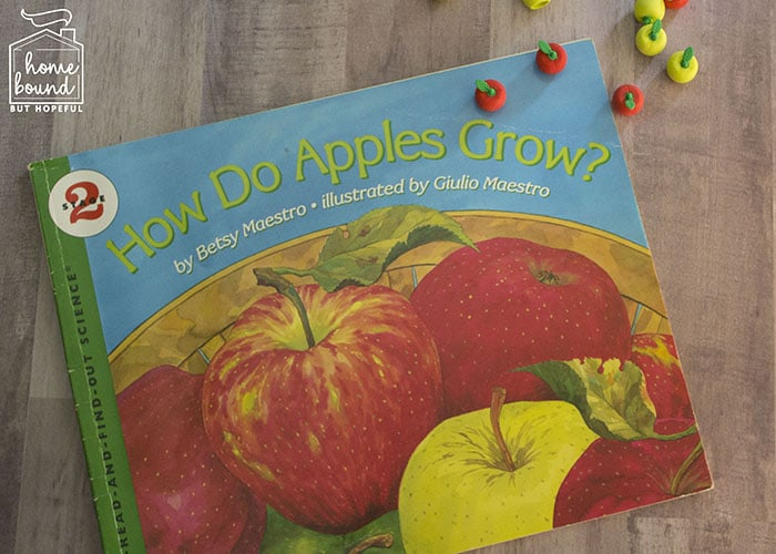 Apple Picking Story Time- How Do Apples Grow?
