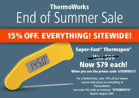 discount thermapen thermometer