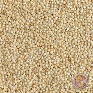 Goldfinch Millet Malt - 2 LB