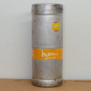 Used 1/6 Barrel Stainless Steel 5 Gallon Commercial Beer Keg Sanke D Sixtel